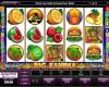 Big Kahuna Slots Online